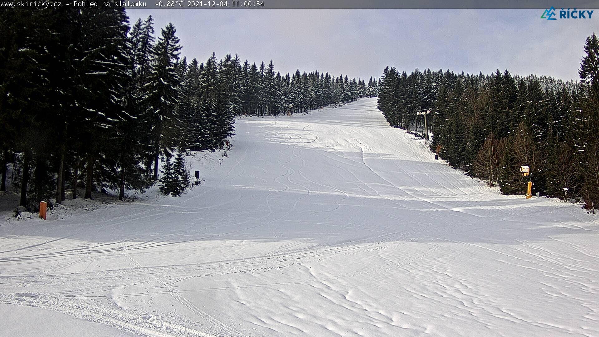 Webcam Skigebiet Ricky v O.h. schwarze Piste - Adlergebirge